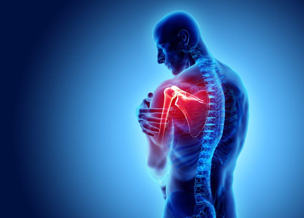 Orthopedic Surgery and Shoulder Traumatology