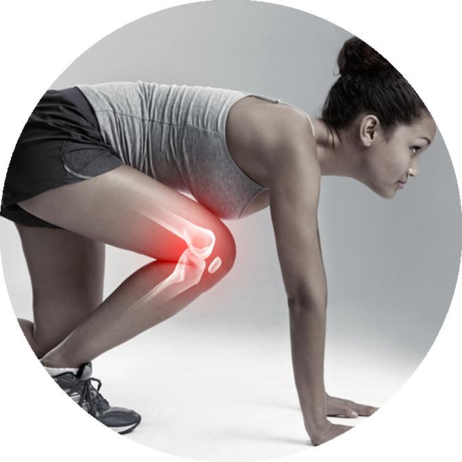 Orthopedic Surgery and Knee Traumatology